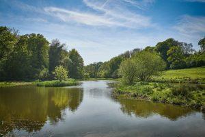 Hartley Mauditt, Hampshire